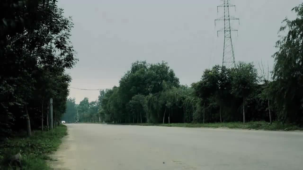 丽丰林场风景