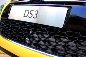 DS 3DS3图片