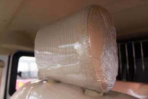 东风小康C35驾驶员头枕图片