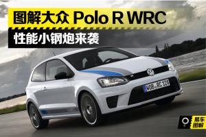 POLOPolo R WRC图片