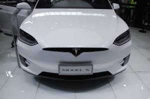 MODEL X(进口)特斯拉Model X图片
