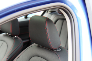 宝马1系驾驶员头枕图片
