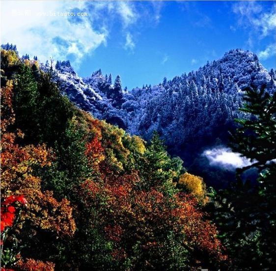 米亚罗红叶风景区米亚罗风景区图片米亚罗风景区