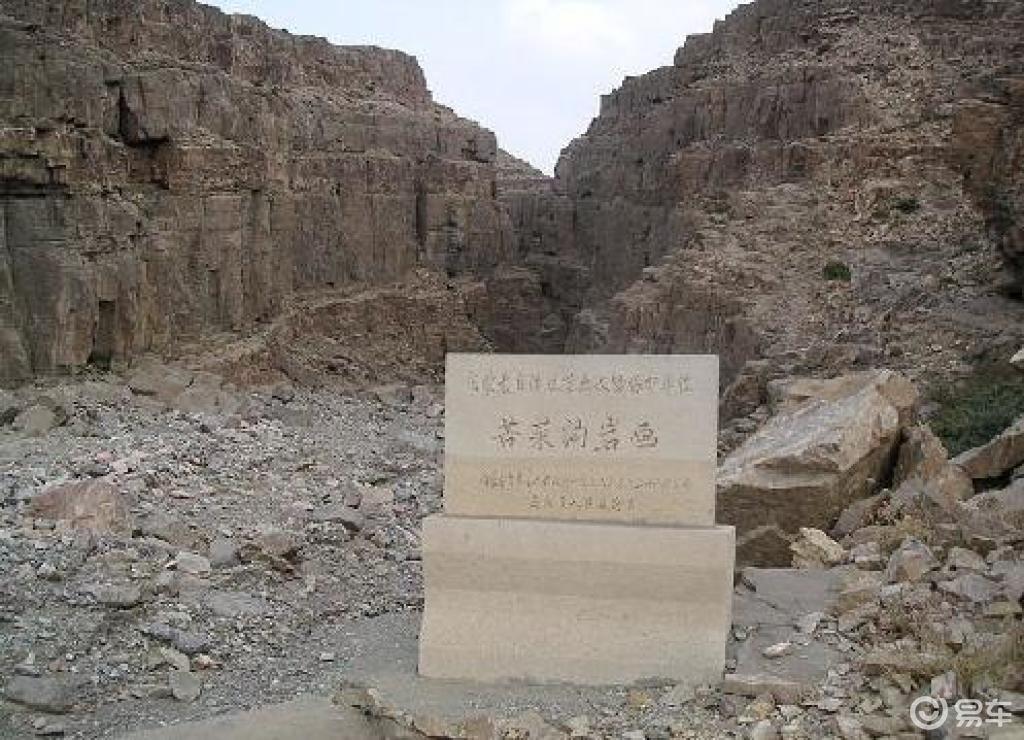 乌海 桌子山岩画