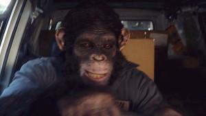 黑猩猩飙车之现代i40