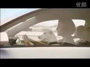 会唱歌的狗-大众POLO精彩电视广告