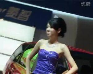 2009广州车展 东风风行菱智车模