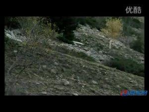 2012款大众帕萨特Alltrack动态宣传片