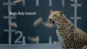 捷豹趣味科技广告 小豹斗小母鸡