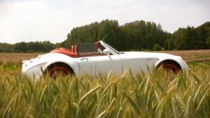 威兹曼RoadsterMF5 体验震撼动力跑车