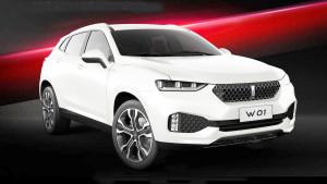 WEY W01概念车豪华SUV 配置亮点解析