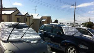冬季天冷,车主临时停车时要做这个动作,别人会为你