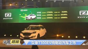 售一辆车捐一棵树,众泰T300EV纯电SUV上市