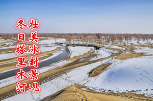 壮美冰封景观,冬日塔里木河