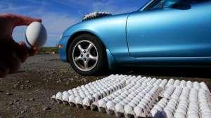如果把一堆鸡蛋扔到车漆上让它们晒干7天会发生什么