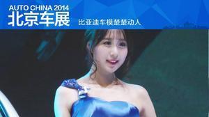 2014北京车展 比亚迪车模楚楚动人