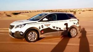 一路驰骋 标致3008穿行撒哈拉沙漠
