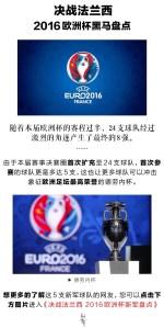 决战法兰西  2016欧洲杯黑马盘点