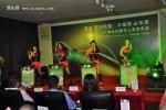 雷诺塔利斯曼广州正式上市 售价31.88万起
