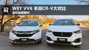 金烂灿嗷嗷叫 WEY VV6 本田CR-V大对比